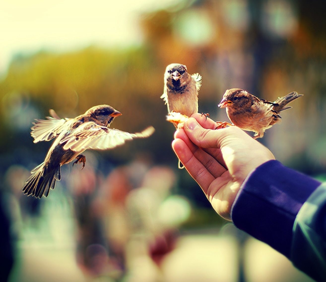 Прикольные картинки за доброту