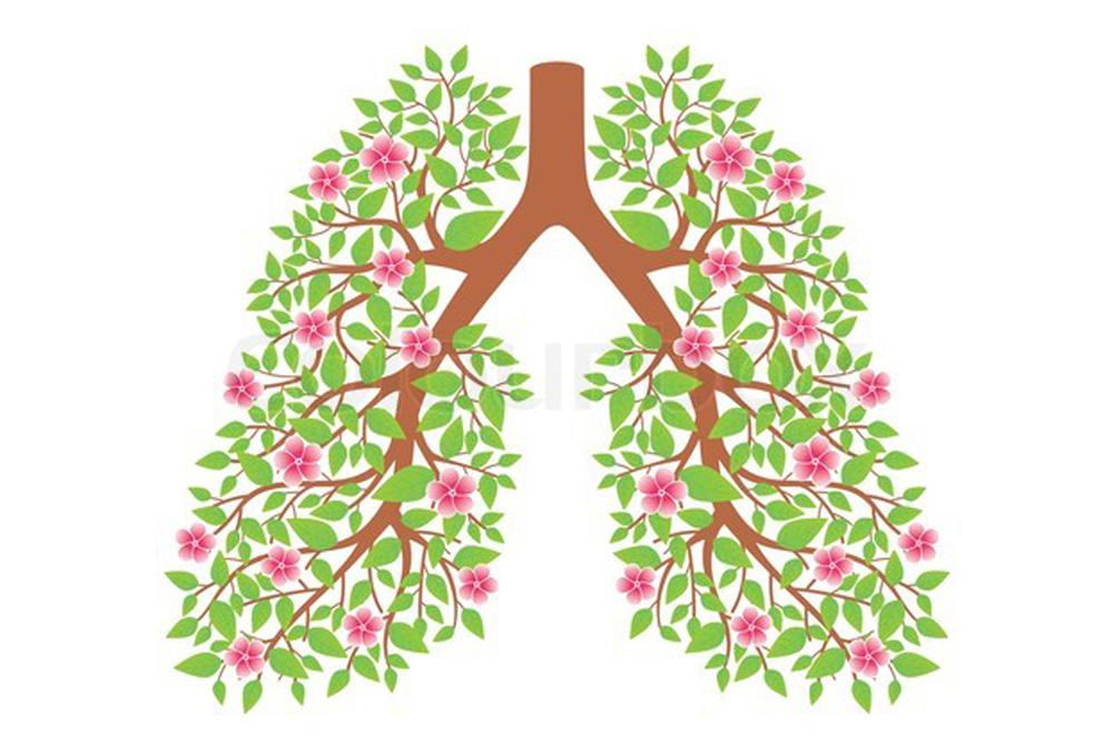 бронхиальная астма брошюра